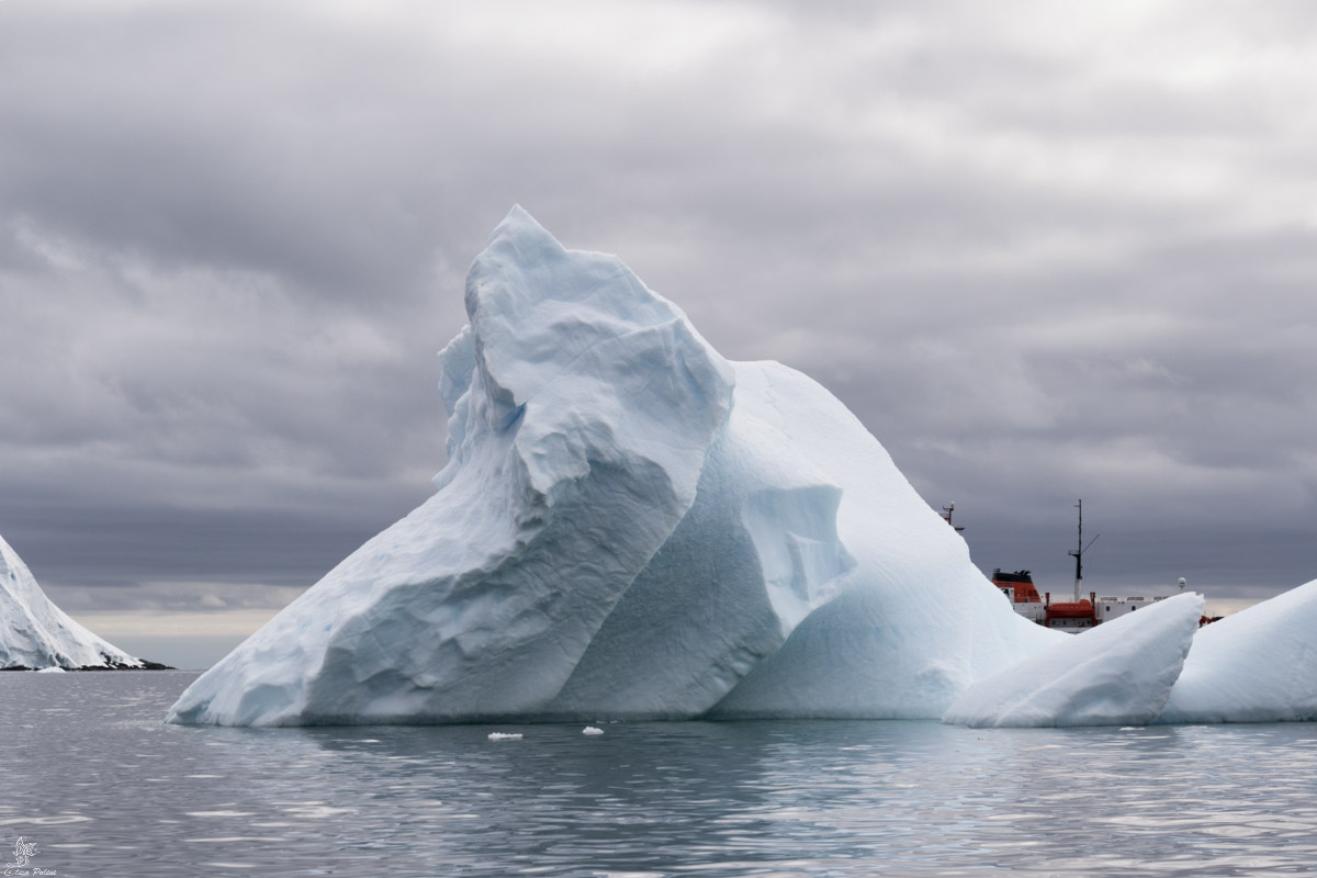 Iceberg come castelli in Antartide