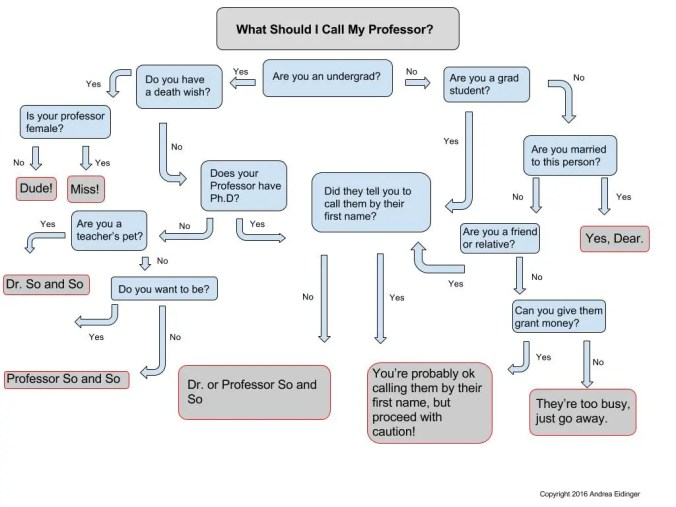 What to call your professor flow chart
