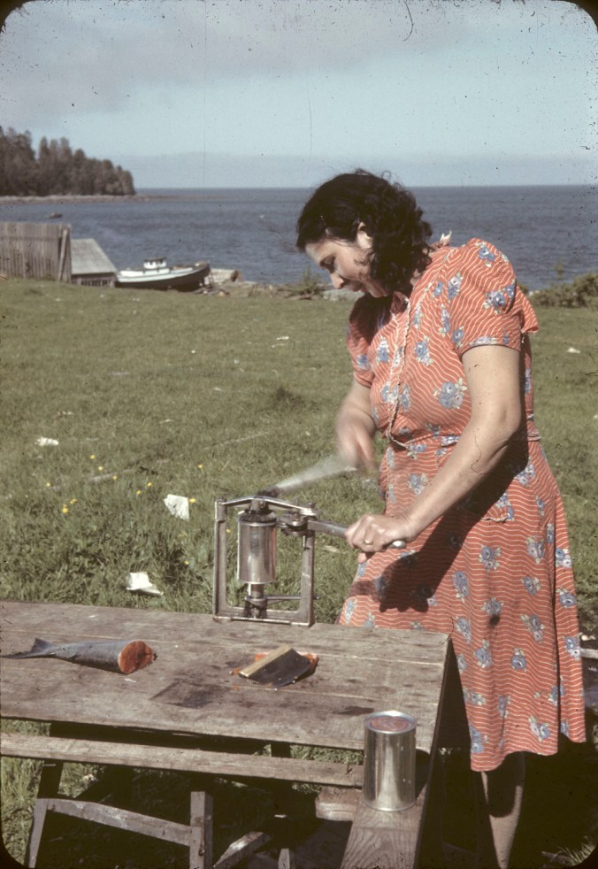 A First Nations woman in a flower dress stands outside in a field near the ocean. She is standing at a wooden table, in the process of hand-canning salmon.