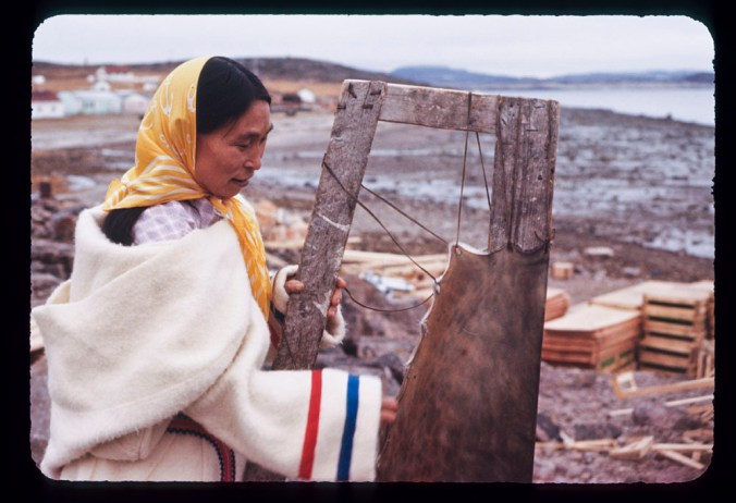 Nepachee, an Inuit woman is stretching a seal skin on a frame. She is sitting outside on or near a beach with cut timber in the background. She is wearing a white woolen coat and a yellow kerchief.