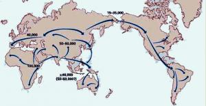 Human_migration