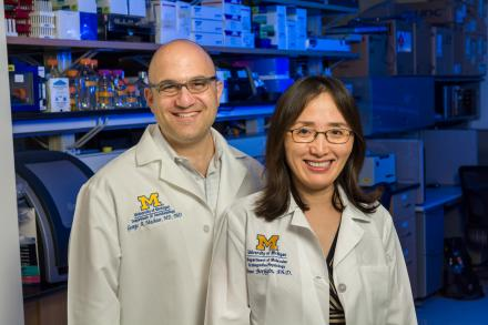 University of Michigan researchers George Mashour, M.D., Ph.D., and Jimo Borjigin, Ph.D.