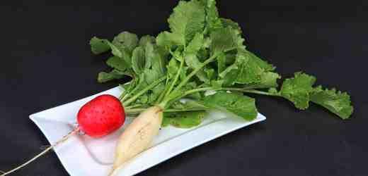 美食達人推薦:吃蘿蔔的N種吃法 美味健康食譜(組圖)