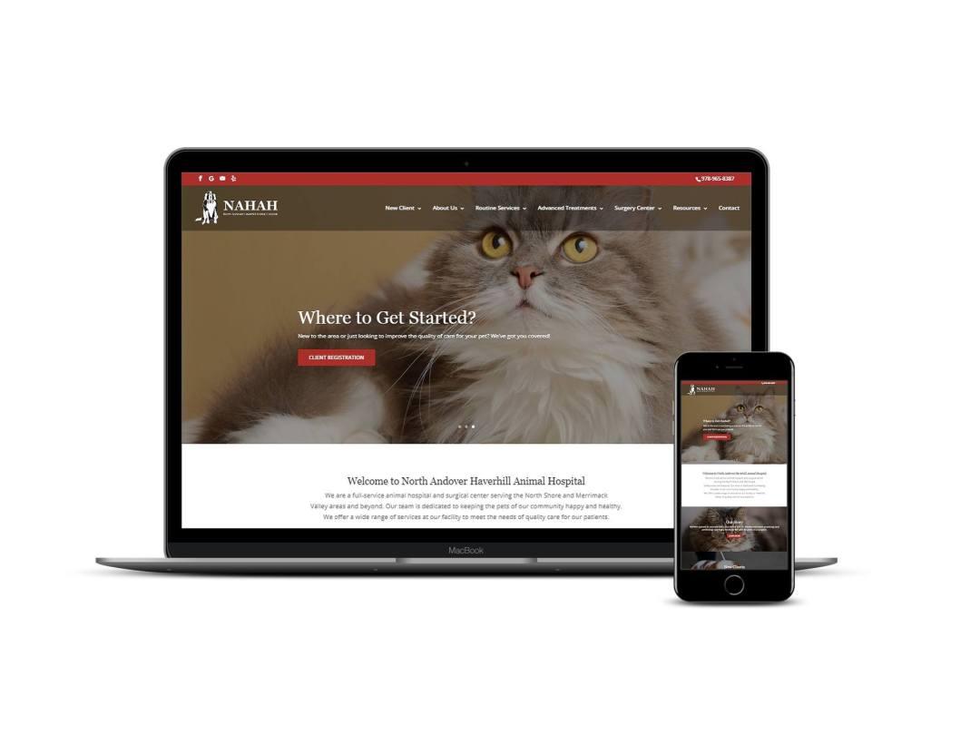 Animal Hospital Web Design