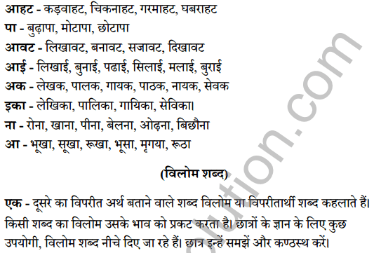 UP Board Class 8 Hindi Solutions व्याकरण 4