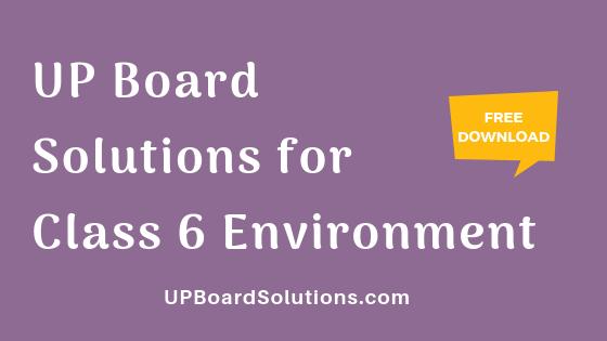 UP Board Solutions for Class 6 Environment पर्यावरण : हमारा पर्यावरण
