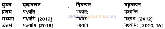 UP Board Solutions for Class 10 Hindi धातु-रूप img-14