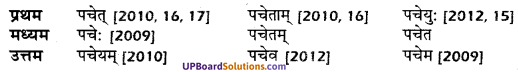 UP Board Solutions for Class 10 Hindi धातु-रूप img-17