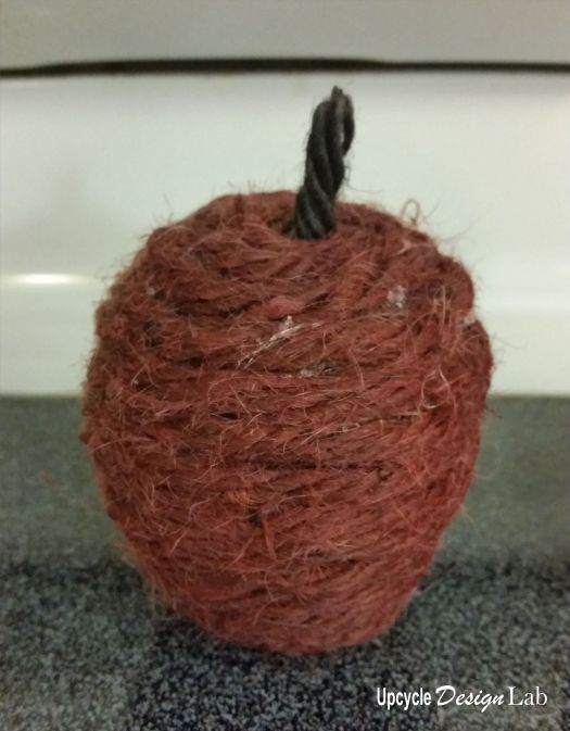 Twine wrapped apple