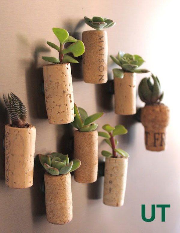 cork planters