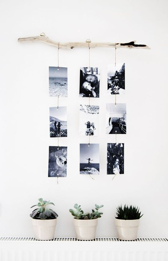 Dorm Room Ideas - Tree Branch Decor