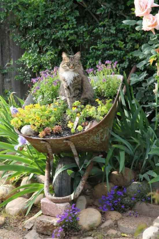 Upcycled garden ideas - wheelbarrow planter