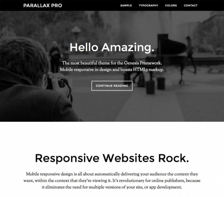 parallax wordpress business theme