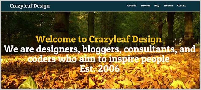 Crazy-Leaf-Design-getting-paid-to-write