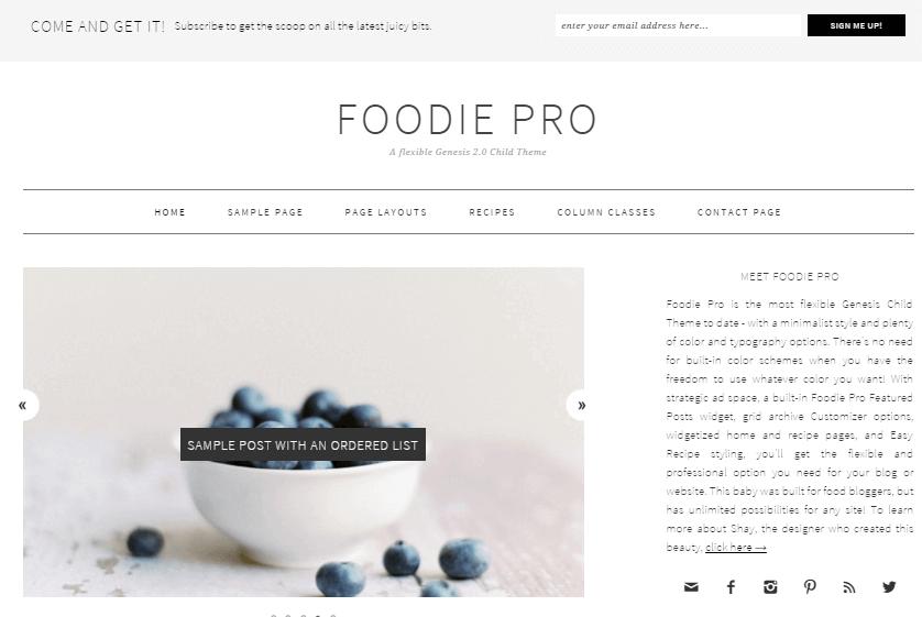 Foodie-Pro-wordpress-recipe-theme