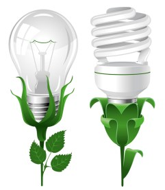 Change Your Light Bulbs