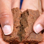 chickpea chocolate brownie