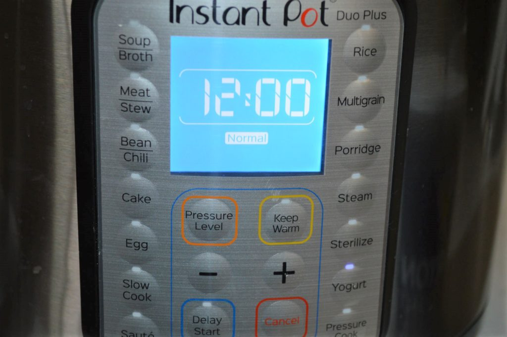 Using instant pot to make idli batter