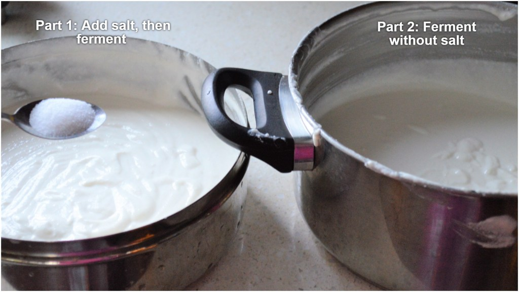 Add salt to batter before or after fermentation