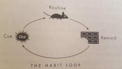 cercles de formation des habitudes