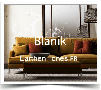 Blanik