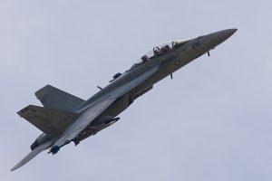 F/A-18F Super Hornet © Leonard van den Broek