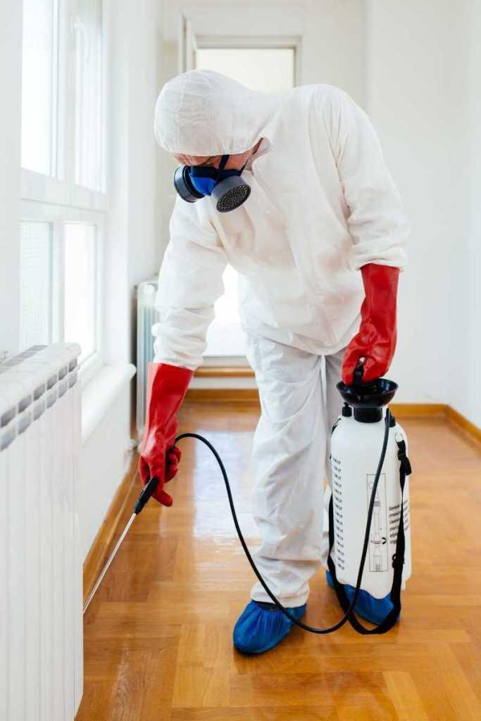 pest control services uk