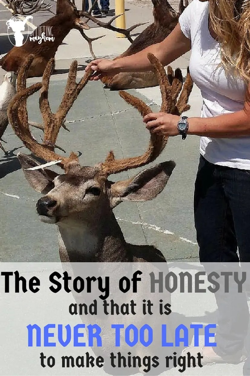 The Story of HONESTY