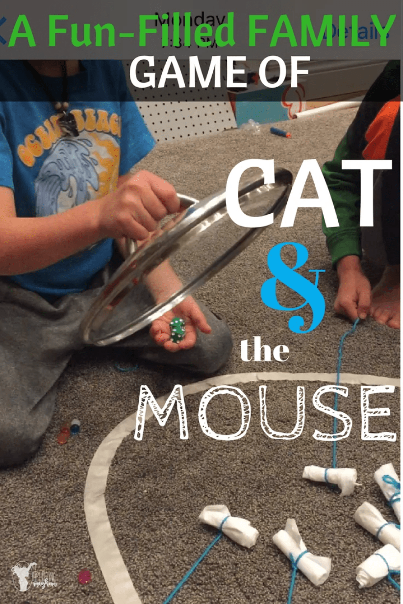 Hilarious game of Cat and the Mouse