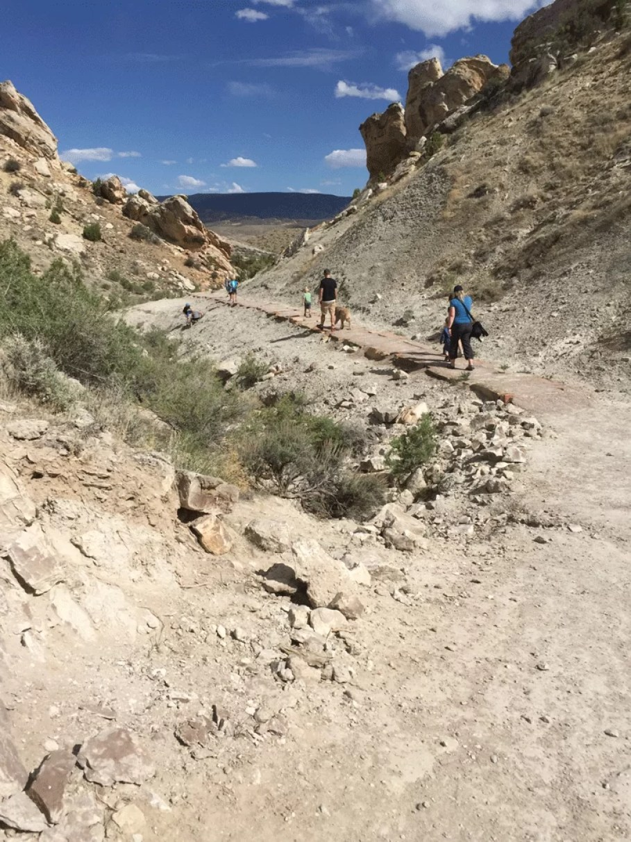 Fossil trail in Dinosaur National Park. You can spot marine life and dinosaur bones