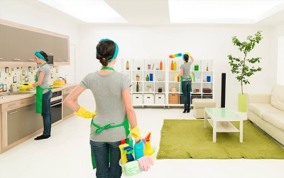 Pioneer Cleaning Services