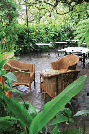 havelock_place_bungalow_breakfast