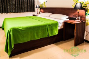 evergreen_spacious_double_room