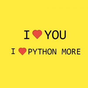 i love python 300x300 - Entenda de uma vez por todas por que todos amam a linguagem Python.