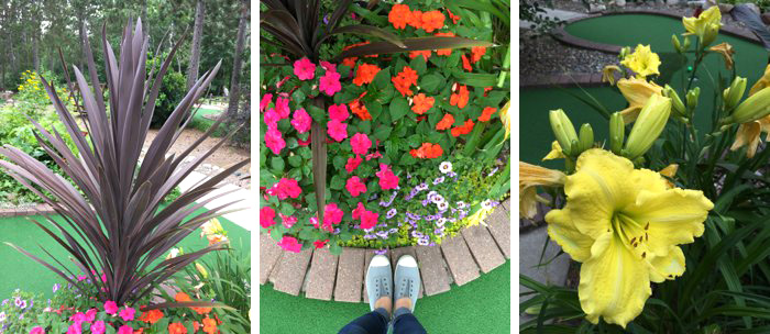 Wildwedge Mini Golf in Pequot Lakes, Minnesota   Amazing Mystery Maze   Up North Parent