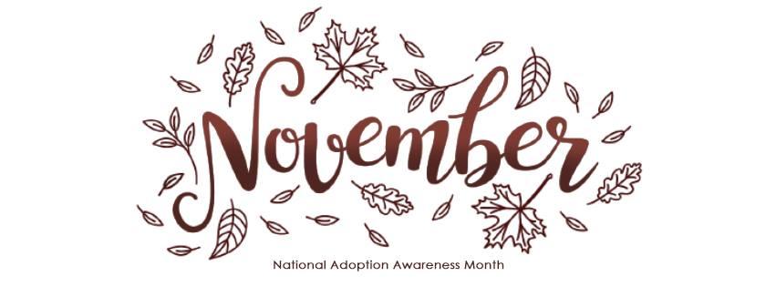 November is Adoption Awareness Month | Respectful Adoption Language