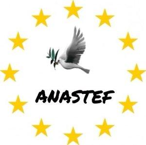 logo anastef foto (1)