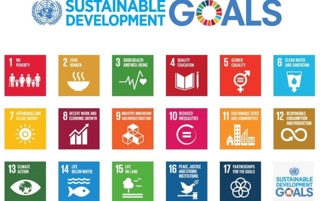 الأمم المتحدة في لبنان تنظم أول ورشة عمل للجنة الوطنية اللبنانية حول أهداف التنمية المستدامة