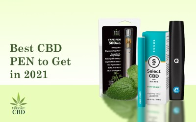 7 Best CBD Pen to Buy: A simple Guide