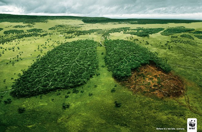 Environmental Awareness Posters and Advertisements - WWF Lungs