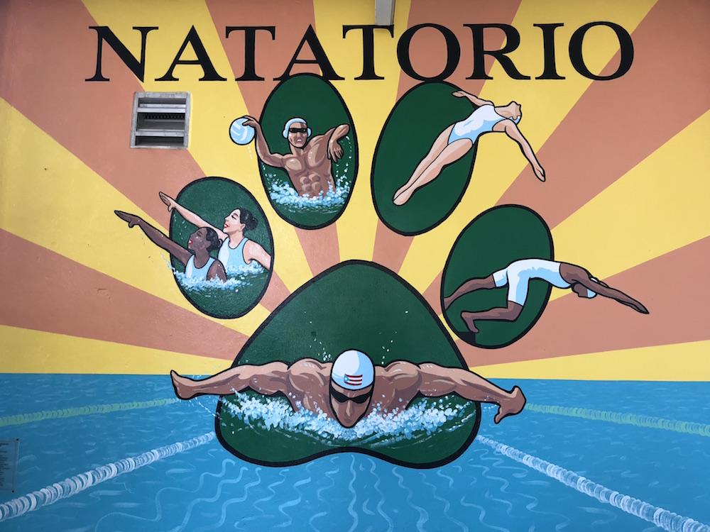 Mural natatorio