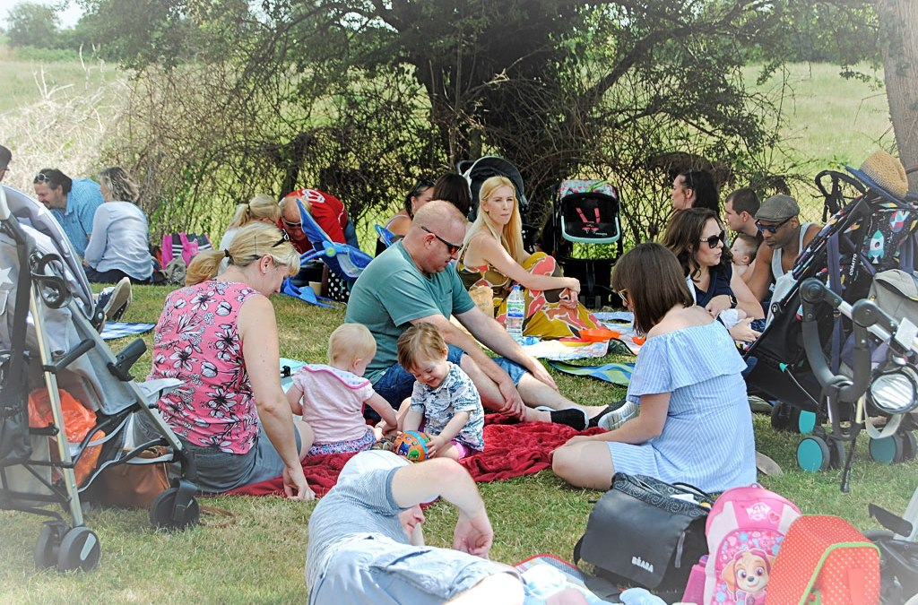 Fun in the Sun – Family Summer Picnic