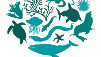 International Day for Biological Diversity (International)