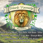 Herb-Family-Riddim-More-Life-&-Vis-Records-(Flow-Production)