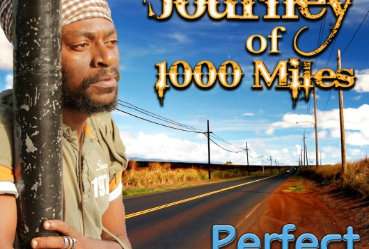Perfect - Journey of 1000 Miles (Album Review)