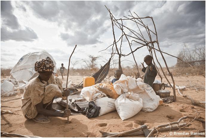 Somali refugee building a shelter.