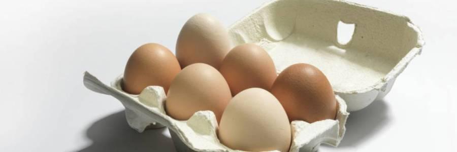 ¿Es malo comer huevo todos los días? Expertos responden