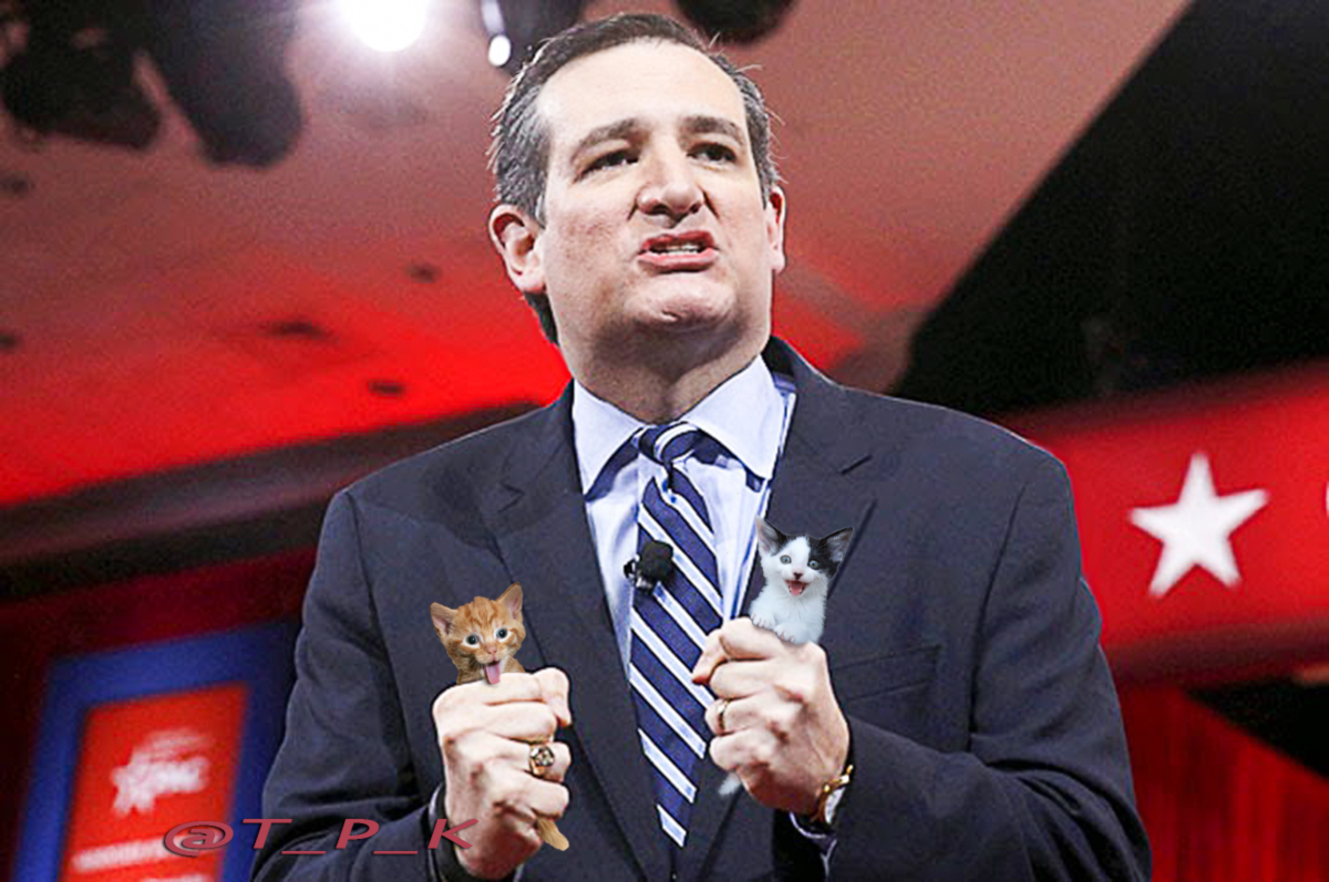 Loathsome Ted's Record Before the Supreme(s)