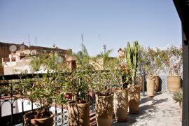 marokko roadtrip