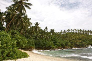 Sri Lanka Mirissa kokemus